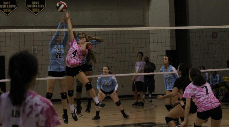 Photo Gallery: Girls Volleyball v Clarksburg