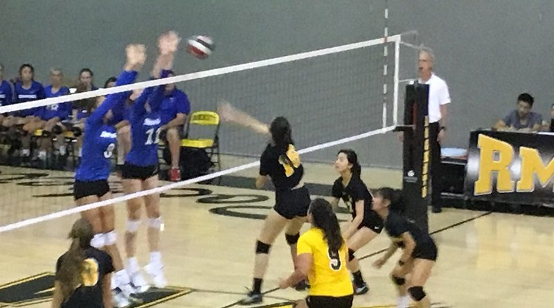 Volleyball falls to BCC in four sets