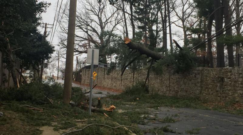 High winds halt classes and disrupt DC metropolitan region